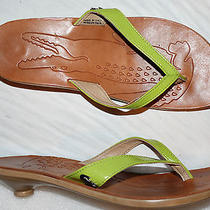Lacoste  Womens Sz 6.5 Green All Leather Thong Sandals Low Heel Flip Flops Italy Photo