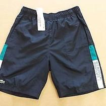 Lacoste Youth Sport Shorts Photo