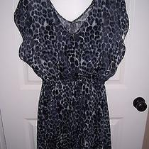 Ladies Animal Print Dress - Size Medium - Express Brand - Excellent Condition Photo