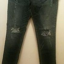 Ladies Baby Phat Jeans Photo