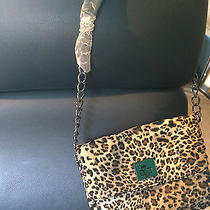 Ladies Bcbg Designer Bag Photo