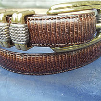 Ladies  Brown Brighton Classic Belt With Silver and Gold Color Decor Size 30 M Photo