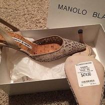 Ladies Designer Shoes Photo