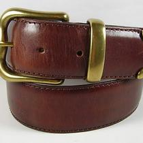 Ladies Fossel  Belt 29