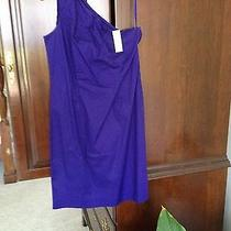 Ladies Gap Summer Dress Nwt Photo