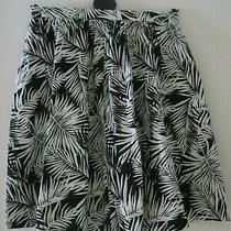Ladies / Girls H & M Black / White Cottonshort Skirt. Size 10. Bnwt. Photo