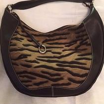 Ladies Handbag Photo