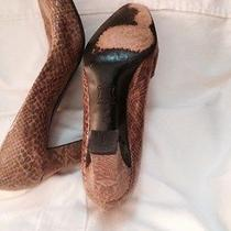 Ladies Leather Snakeskin Print Size 8.5 Medium Yves Saint Laurent Brownish Beige Photo