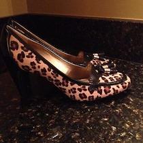 Ladies Leopard Print Shoes Photo