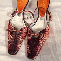 Ladies Shoes Size 8 Photo