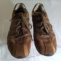 Ladies Skechers Bike Patroller Brown Suede Shoe Size 8 Photo