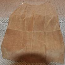Ladies Suede Skirt Photo