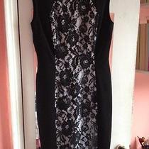 Lafayette 148 Size 2 Black and White Dress Photo