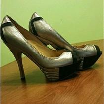 Lamb Heels Photo