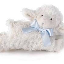 Lamb Rattle Blue Photo