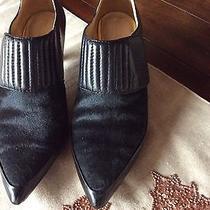 Lamb Shoes Photo