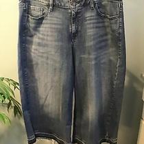 Lane Bryant Crop Jeans Raw Edge Size 14 Blue Slight Distress Photo