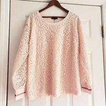 Lane Bryant Lace Front Crew Sweatshirt/top  Blush Size 14/16  Photo