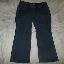 Lane Bryant Straight Blue Denim Jeans 20 Petite Photo