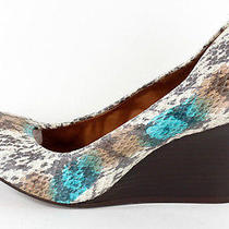 Lanvin 990 Nib Multi Color Snakeskin Ballerina Wedges 41 Photo