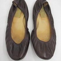 Lanvin Ballet Flat Cocoa Brown Leather Size 38.5 Gently Worn Photo