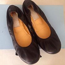 Lanvin Ballet Flats in Black Photo