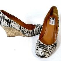 Lanvin Beige Black Python Wedge Pumps Shoes 36 Photo