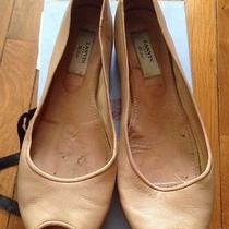 Lanvin Flats Photo
