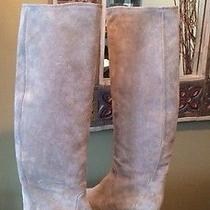 Lanvin Hidden Wedge Tall Riding Boots Gris Gray Brown Taupe Suede  37.5 Us 7.5 M Photo