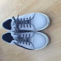 Lanvin  Low Sneakers Photo