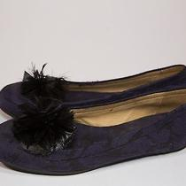 Lanvin Purple Flat With Feather Detail  Photo