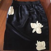 Lanvin Skirt  Photo