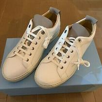 Lanvin White Sneakers With Grey Tongue and Heel Tab Brand New Everything Sz 9uk Photo