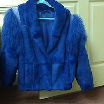 Lapis Blue Lamb Wool Coat  Photo