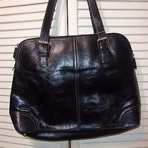 Large Beautiful Sleek Fossil Black Bag With Flaw Photo