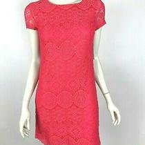 Laundry Shelli Segal Short Sleeve Lace Shift Dress Pink Lined Zip Women 2 Nwt Photo