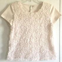 Lauren Conrad Blush Flower Petal Top Tee Blouse Textured Chiffon Floral Pink S Photo