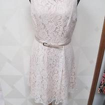 Lauren Conrad-Blushing Blooms-White/beige Lace -Fit and Flare Dress -Size-8-Nwt Photo