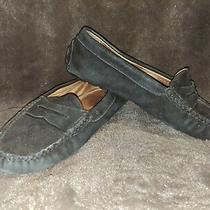 Lauren Ralph Lauren Christie Black Suede Loafers 8.5b Photo