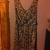 Leapred Print Dress (Avon) Photo