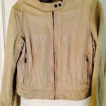 Leather Jacket Fits Like a Large Photo