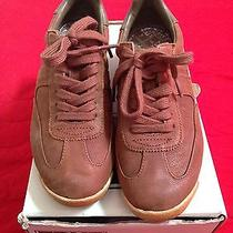 Leather Sneakers Photo