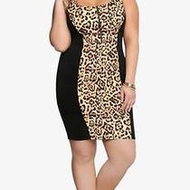 Leopard Dress  Photo