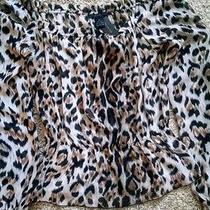 Leopard Print Blouse Photo