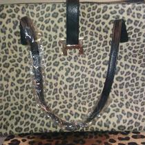 Leopard Print Handbags Soft Rubber Feelleather Shoulder Bag Women Totes Zxb205 Photo