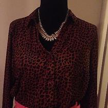 Leopard Print Shirt Photo