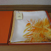 Les Bles Hermes Scarf 100% Silk Carre (Newtags) Photo