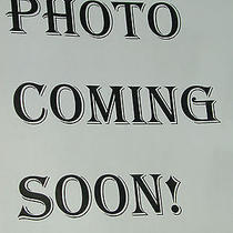 Lesportsac Black Shoulder Bag Photo