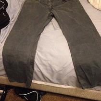 Levi Jeans 514 Blue  Photo