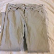 Levi's Signatue Low Rise Bootcut Stone Jeans Size 10 Short Photo
